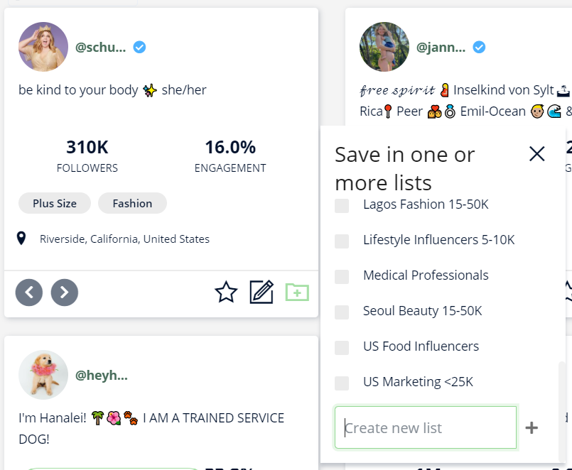 A screenshot of Heepsy, showing how to add influencers to a list.